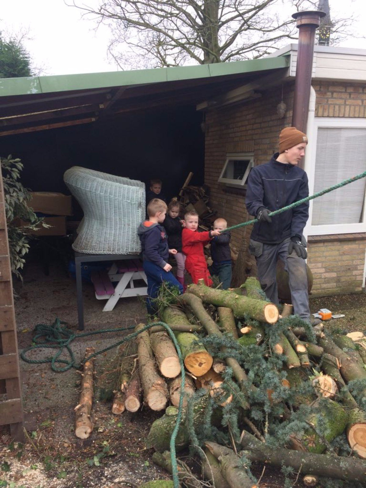 Boom verwijderen Jan Steenstraat Boven-Hardinxveld